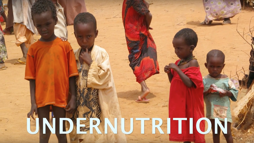 Fighting Hunger and Malnutrition
